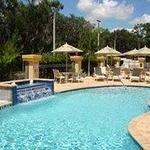 фото Holiday Inn Express Tampa North Telecom Park 228609842