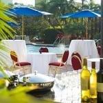 фото Tampa Marriott Westshore 228699603