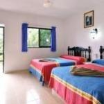 фото Hotel Maya Bric 228704962