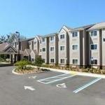 фото Microtel Inn & Suites by Wyndham Jacksonville Airport 228732115