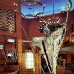 фото Nativo Lodge 228762162