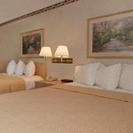 фото Quality Inn & Suites - Addison 228886537