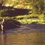 фото Ranch At Ucross 228929672