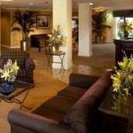 фото Park Plaza Hotel 228933007