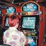 фото Seminole Hard Rock Hotel and Casino Tampa 229028699