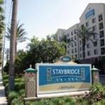 фото Staybridge Suites Anaheim Resort 229086159