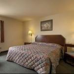 фото Super 8 Motel - Houston/I-10/Federal Road 229119914