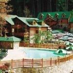 фото Westgate Smoky Mountain Resort & Spa 229252115