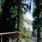 фото Yosemite Lodge at the Falls 229269905