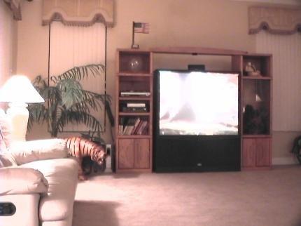 фото 8 Bedroom Private Villa Hampton Lakes 29339088