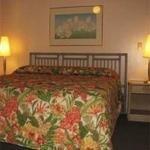 фото Continental Surf Hotel 320237013