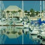 фото Best Western PLUS Newport Beach Inn 320317635