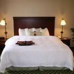 фото Hampton Inn & Suites Berkshires-Lenox 320632428