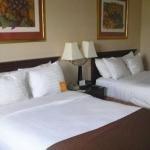 фото Holiday Inn Batavia-Darien Lake Area 362534032