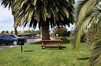 фото Ocean Palms Motel 371473780