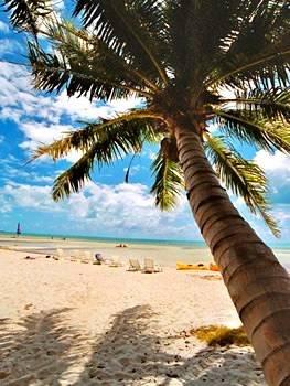 фото Casa Del Sol Beach Resort 372300972