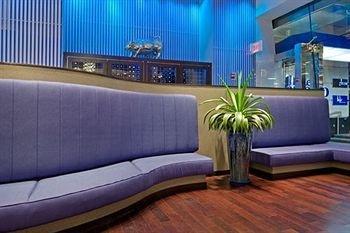 фото Hotel Indigo - Chelsea 372915320