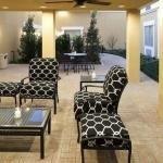 фото Fairfield Inn & Suites Houston Intercontinental Airport 386123667