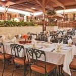 фото Holiday Inn Perrysburg French Quarter 386666357