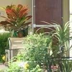 фото Holiday Inn Saint Louis-Fairview Heights 386677476