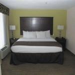 фото La Quinta Inn & Suites Horn Lake/Southaven Area 387175124