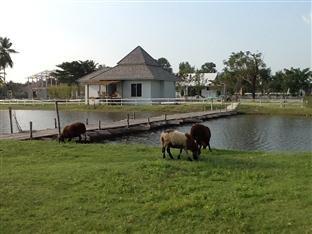 фото Sheep World Pattaya Farm & Resort 405283010