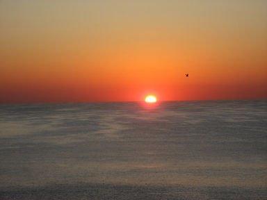 фото Drifters Reef Motel 415125025