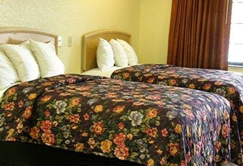 фото Matador Motel 415392119