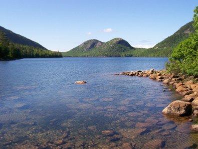 фото Best Western Acadia Park Inn 487648207