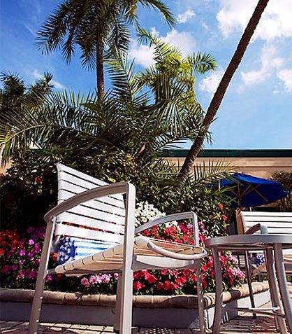 фото Courtyard by Marriott Fort Lauderdale East 487668640