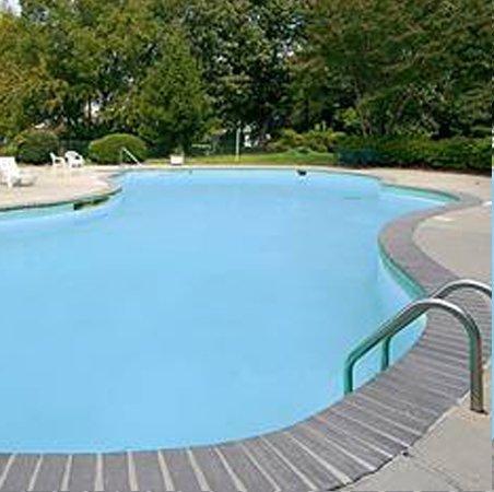 фото Wynnwood Plaza Hotel - Newport News 487678995