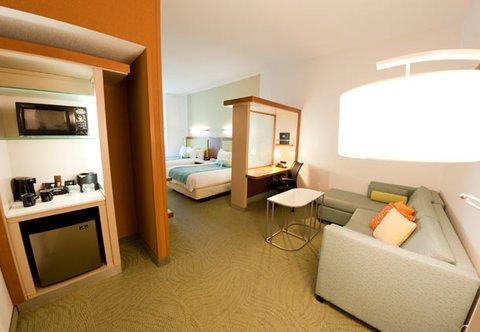 фото SpringHill Suites Detroit Auburn Hills 487683819