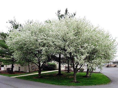 фото Motel 6 Harrisburg - Carlisle 487705427