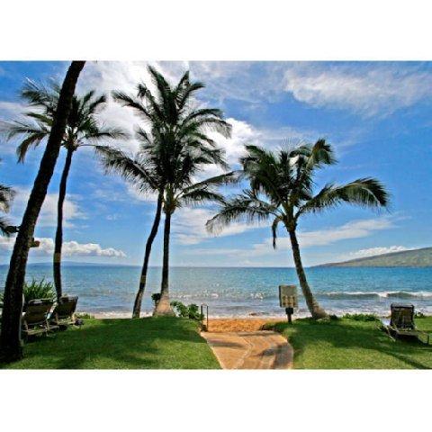 фото Kealia Resort 487712972
