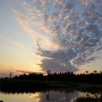 фото STAFFORDS CROOKED RIVER LODGE 487744085