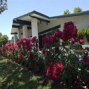 фото Rose Garden Inn - Santa Maria 487777641