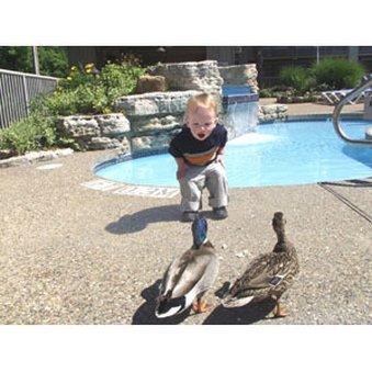 фото The Resort at Port Arrowhead 487899016