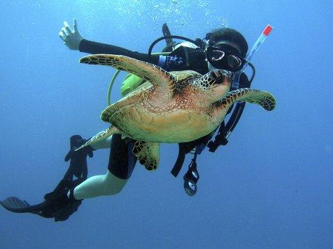 фото Kauai Coast Resort at the Beachboy 487919786