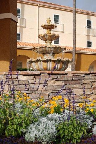 фото Radisson Hotel San Diego Rancho Bernardo 487959115