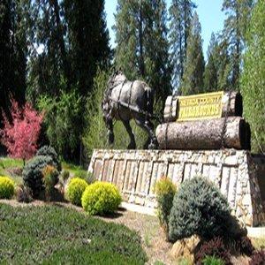 фото Best Western Gold Country Inn 487966578