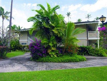 фото Plantation Hale Suites 488177598