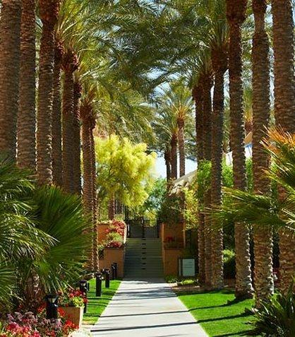 фото JW Marriott Phoenix Desert Ridge Resort 488213474