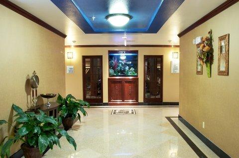 фото Holiday Inn Express Sealy 488333241