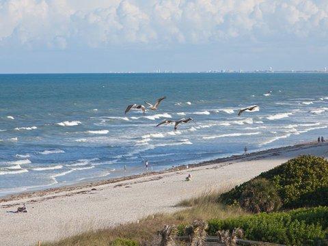 фото Cocoa Beach Oceanside Inn 488354155