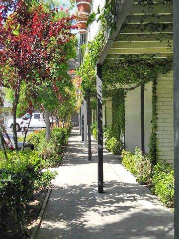 фото Alamo Inn & Suites 488361954