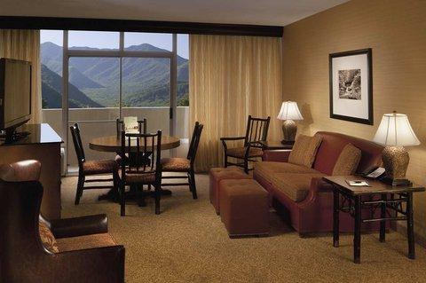фото The Park Vista - A DoubleTree by Hilton Hotel - Gatlinburg 488385311