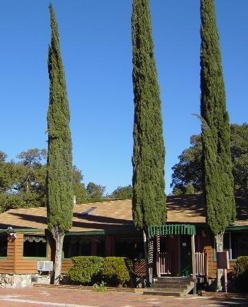 фото Live Oak Springs Resort 488417230
