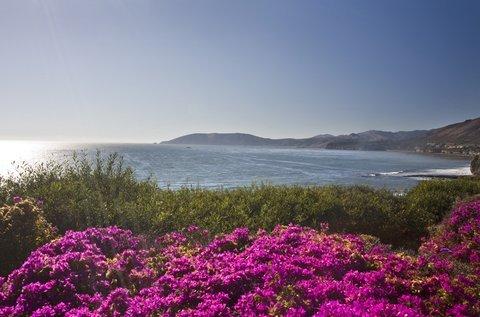 фото Dolphin Bay Resort and Spa 488433033