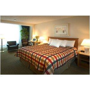 фото Comfort Inn 488444928