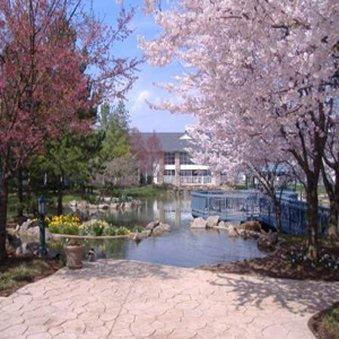 фото Cherry Valley Lodge 488494840